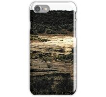 Hovenweep 47 iPhone Case/Skin