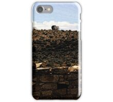 Hovenweep 52 iPhone Case/Skin