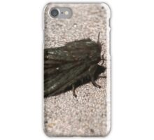 Hovenweep 54 iPhone Case/Skin