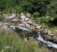 setcases river by arnau2098