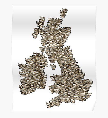 CATography- UK & Ireland Poster