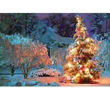 Snowy Christmas Tree Photographic Print