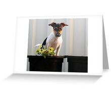 Potted Millie Greeting Card