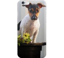 Potted Millie iPhone Case/Skin