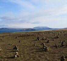 Inukshuk field by Jenna Fullerton