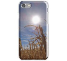 Sun Shining Down on the Corn Fields iPhone Case/Skin