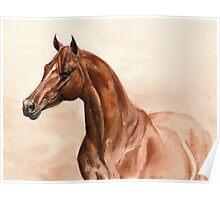 Vintage Chestnut Horse Poster