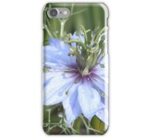 nigella - love-in-a-mist iPhone Case/Skin