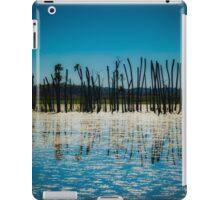 Orlando Wetlands iPad Case/Skin