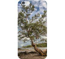 The Mangrove Tree iPhone Case/Skin
