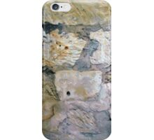 Alamo Bullet Holes iPhone Case/Skin