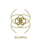 The Scorpio Zodiac Sign by Vy Solomatenko