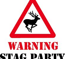 stag party, stag, party, married, stag doo by Nicnak85
