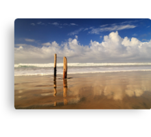 Posts On The Shore Canvas Print