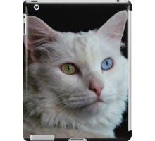 And I named her Delain II iPad Case/Skin