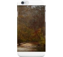 In the Middle iPhone Case/Skin