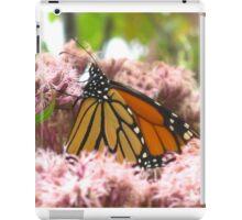 Irreplaceable iPad Case/Skin