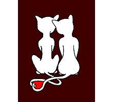 Love Cats Solid White Photographic Print