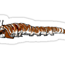 Catterbasset Sticker
