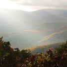 Late Afternoon In The Smokies by Asoka