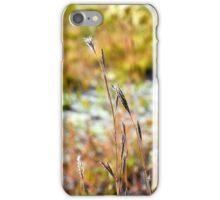 Autumn Grasses iPhone Case/Skin