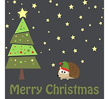 Cute hedgehog Christmas Scene Photographic Print