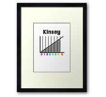 Kinsey Scale Framed Print