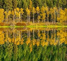 Autumn Reflections in the Pend Oreille River  by Jim Stiles