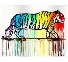Rainbow Tiger Poster