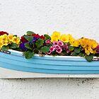 Little Garden in a boat. by John (Mike)  Dobson