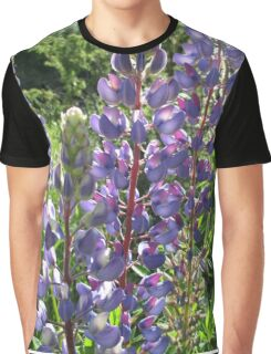 Late Afternoon Lupins Graphic T-Shirt