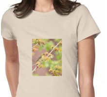 American Goldfinch In Springtime Maple Womens Fitted T-Shirt