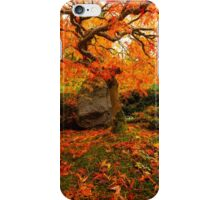 Autumn Ablaze iPhone Case/Skin