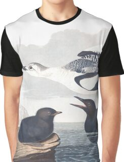 Black Guillemot - John James Audubon Graphic T-Shirt