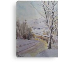 Last Winter Sunset Snow Scene Metal Print