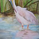 PELICAN - improvement ... by Marilyn Grimble