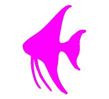 Pink Angel Fish Photographic Print