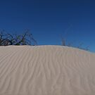 Mini Dune by chibiphoto