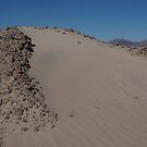 A small dune by chibiphoto