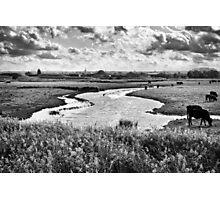 Ham Marshes Photographic Print