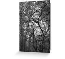 Scary Trees- Pimpala Track Greeting Card