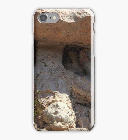 Mayan carvings iPhone Case/Skin