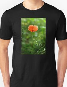 Red Poppy Flower in the Field T-Shirt