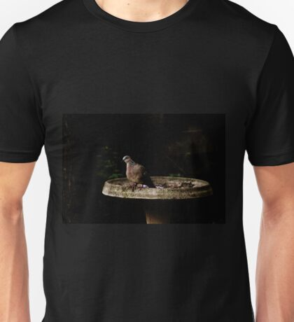 Diamond Dove Bird By The Bird-Bath Unisex T-Shirt