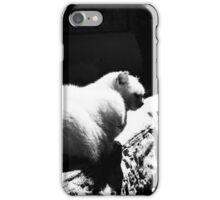 Cat and dog iPhone Case/Skin