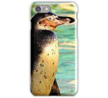 Humboldt Penguin 2  iPhone Case/Skin