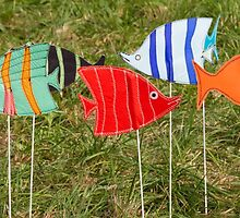 artistic and colored fish by spetenfia