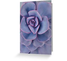 Purple Pearl Greeting Card