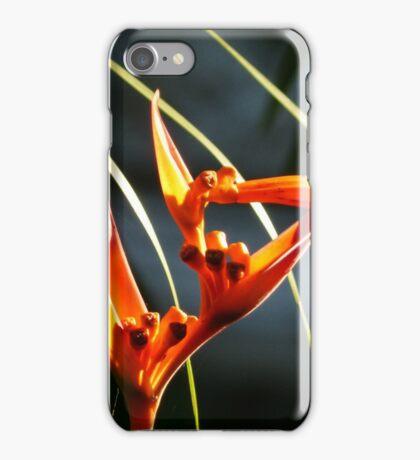 flower III - flor iPhone Case/Skin