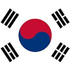 Living Korea Flag by cadellin